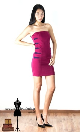Bodycon Tube Dress - www.thetrunkshop.com.sg