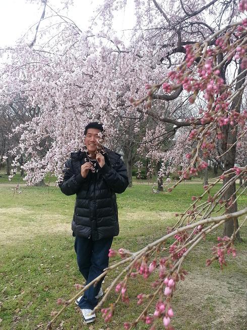 Osaka Castle Sakura x Derek