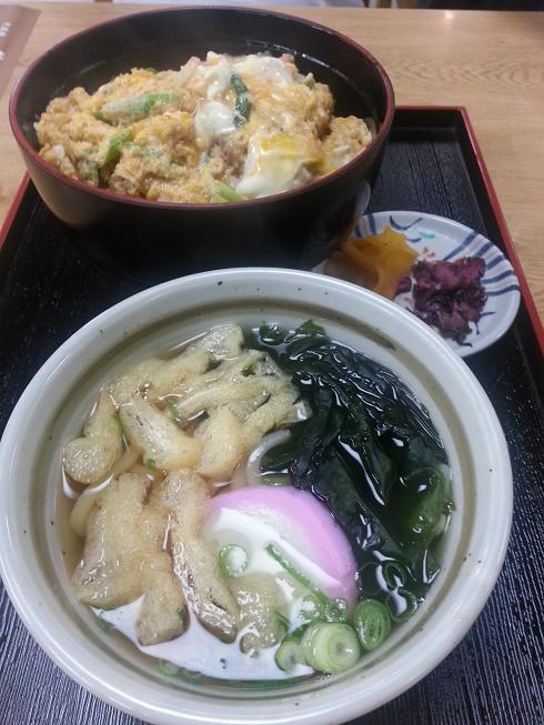 Osaka Castle Udon + Katsu Bowl
