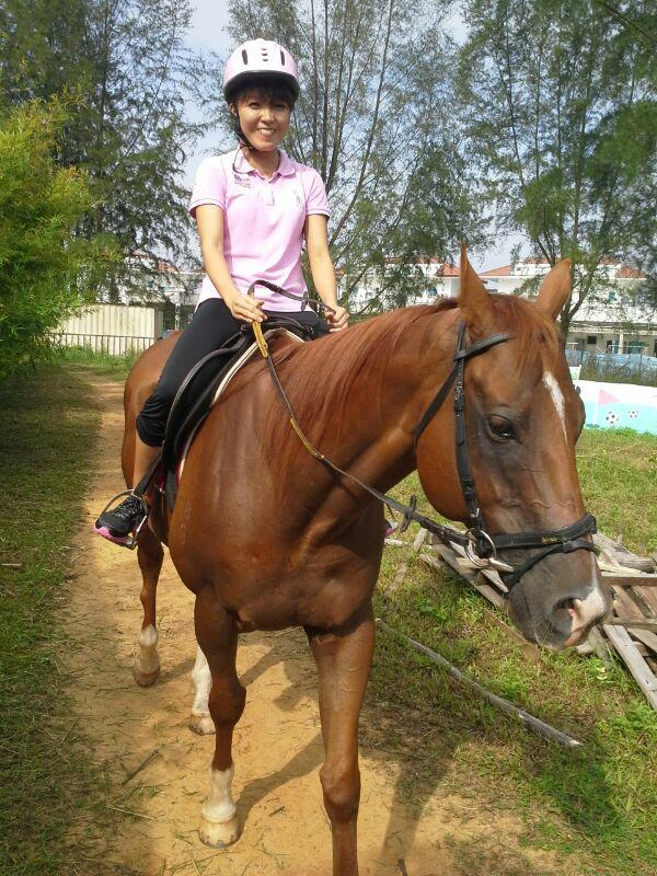 Horse Riding in Singapore, Horse Riding locations and ...