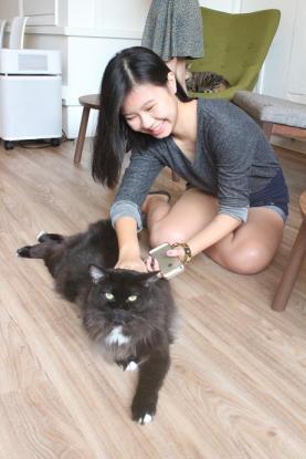 Singapore Cat Cafe Neko no Niwa