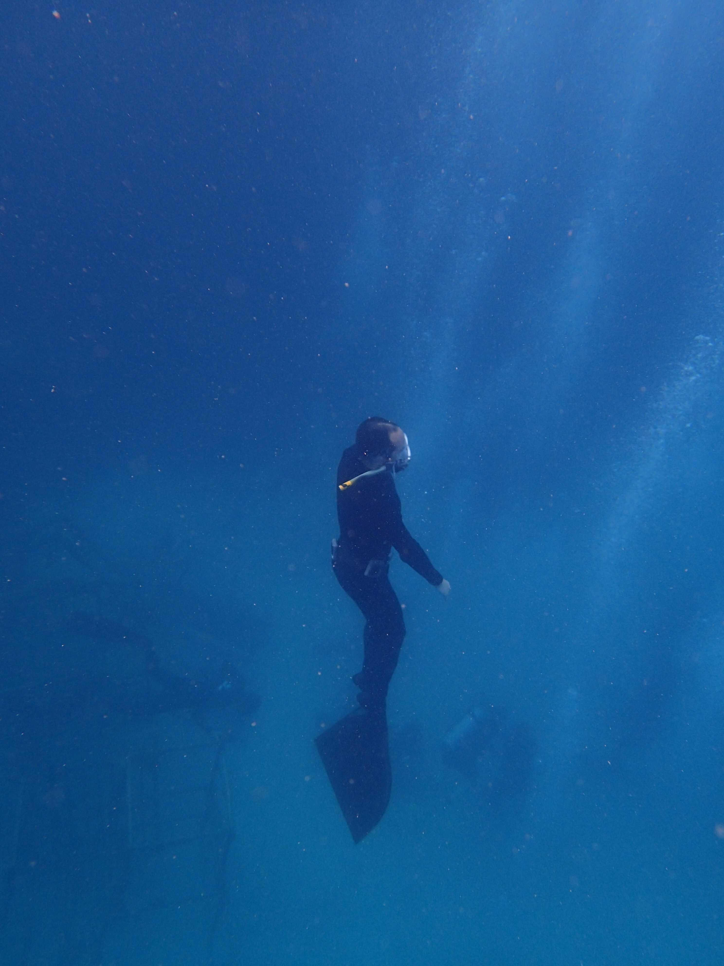Freediving World Champion Believed Dead