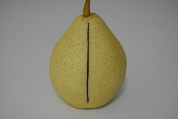 Pear before experiment