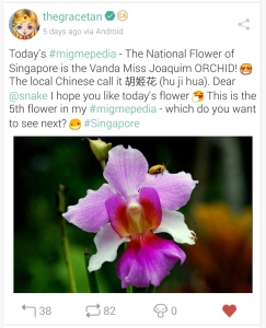 National Flower of Singapore