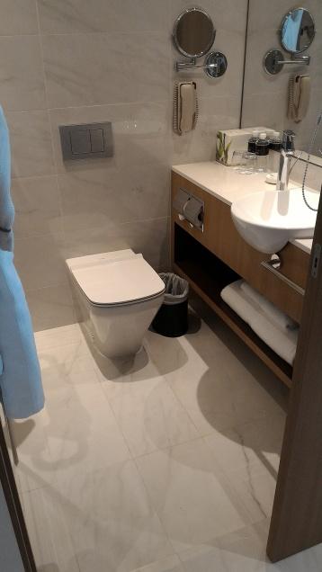 Park Hotel Alexandra toilet