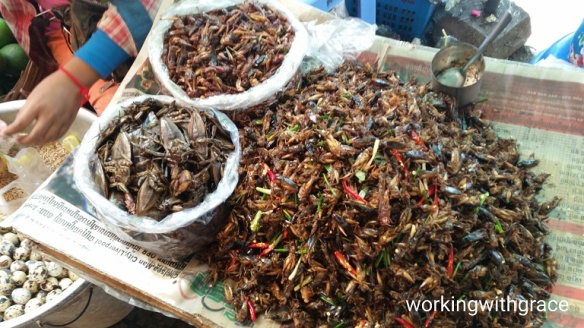 Cambodia Fried Insects