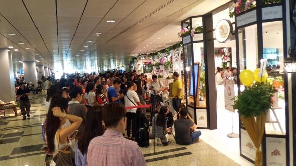 Hello Kitty Orchid Garden Changi Airport