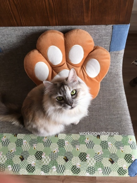 Paw Cushion