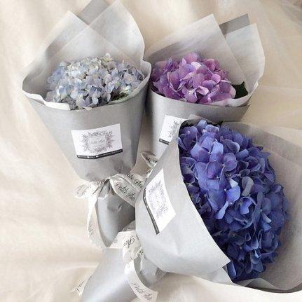 Petite Fleur SG