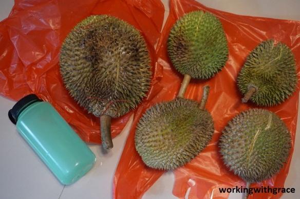 sengkang cc durian festival