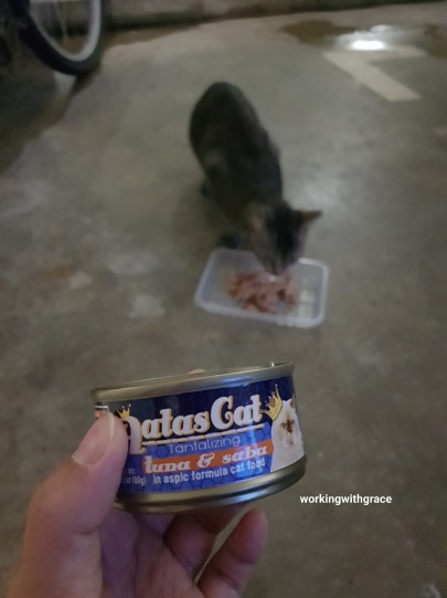 Aatas Cat Food