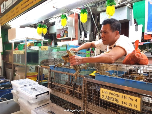 live frogs chinatown wet market