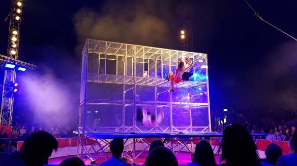 great moscow circus review